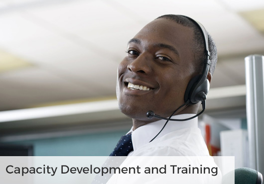 capacity development training